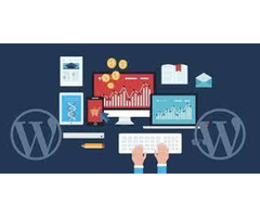 Are you looking for a  WordPress designer  ?