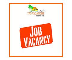 Online Marketing Work Online Jobs From TFG Vacations Pvt. Ltd.